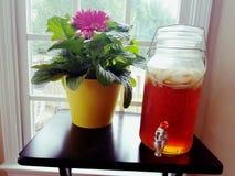 сладостный чай стоковое изображение