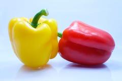 Сладостный peeper, болгарский перец, Capsicum Стоковые Изображения