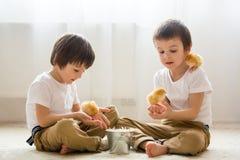2 сладостных маленьких дет, мальчики preschool, братья, играя острословие Стоковые Фотографии RF
