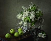 С белыми сиренью и яблоками Стоковое Изображение