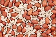 Слезли арахисы и семена подсолнуха Стоковое фото RF