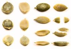 Слезли изолированные семена тыквы Стоковые Фото