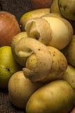 Слезли potatoe младенца Стоковое Фото