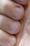 Сдержанные ногти стоковое фото rf