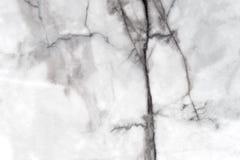 Сделанная по образцу мрамором предпосылка текстуры Стоковое Изображение RF