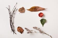сделанные листья рамки осени Стоковые Изображения RF