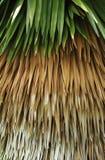 Сделанные по образцу листья стоковая фотография rf