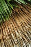 Сделанные по образцу листья стоковое изображение rf