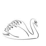 Сделанный эскиз к лебедь Стоковые Изображения