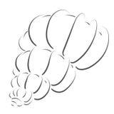 Сделанный эскиз к seashell Стоковое фото RF