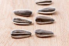 09 20 сделали вопросами семян год солнцецвета Стоковое фото RF