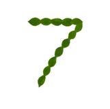 7 сделал от зеленых листьев Стоковая Фотография RF