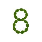 8 сделал от зеленых листьев Стоковые Изображения