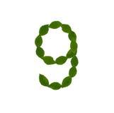 9 сделал от зеленых листьев Стоковые Фотографии RF