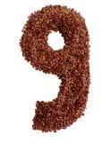 9 сделал с льняным семенем также как изолированное льняное семя Стоковые Фотографии RF