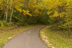 След велосипеда осени в древесинах Стоковое Изображение