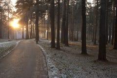 След в заход солнца Стоковое фото RF