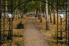 След в парке Стоковое фото RF