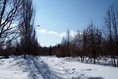 След в парке Стоковая Фотография RF
