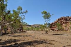 След в сухой засухе Австралии захолустья русла реки Стоковые Фотографии RF