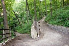 След леса, дорога более менее путешествовал Робертом Fr Стоковые Изображения