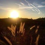 След захода солнца Стоковое Изображение RF