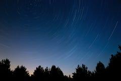 След звезды в ночном небе На фоне cr дерева Стоковое Изображение