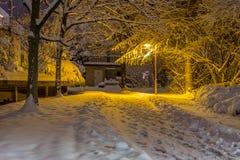 След зимы Стоковое Изображение