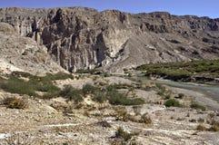 След каньона Boquillas на большом национальном парке Техасе загиба Стоковые Фотографии RF