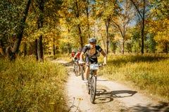 След катания велосипедиста горного велосипеда на солнечном дне, здоровом образе жизни Стоковая Фотография