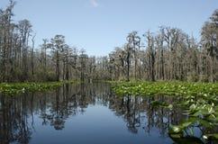 След каяка каное озера Minnies, охраняемая природная территория соотечественника болота Okefenokee Стоковое Изображение
