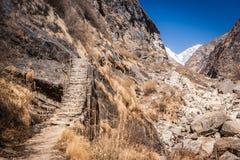 След к MBC на треке базового лагеря Annapurna, Непалу стоковые изображения rf