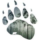След медведя бесплатная иллюстрация