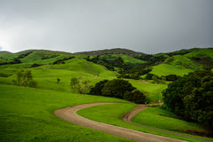 След на зеленой горе весной Стоковое Изображение RF