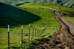 След на зеленой горе весной Стоковые Изображения RF