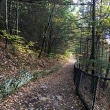 След на парке штата Watkins Глена, NY Стоковые Изображения RF