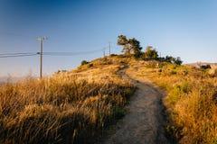 След на парке Grant, в Вентуре, Калифорния Стоковые Фотографии RF