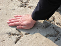 След ноги в песке Стоковое фото RF