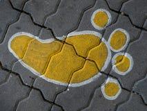 След ноги на поле Стоковое Изображение RF