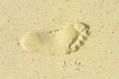 След ноги на пляже Стоковое Изображение RF