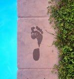 След ноги Стоковые Фотографии RF