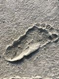 След ноги Стоковые Изображения RF
