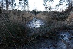 Следовать грязью Стоковая Фотография RF