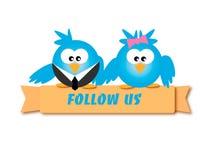 Следовать нами голубые птицы стоковое изображение rf