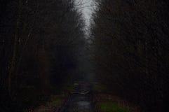 Следовать темной дорогой стоковые фото