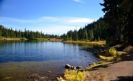След озера отражени стоковые фото