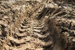 След от автошины трактора в земле на поле ` s фермера Стоковые Изображения