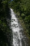 След падений Moana, Оаху, Гаваи Стоковая Фотография