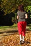След по пересеченной местностей женщины идя в лесе осени Стоковое Фото