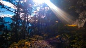 След стороны banff горы тоннеля Стоковые Изображения